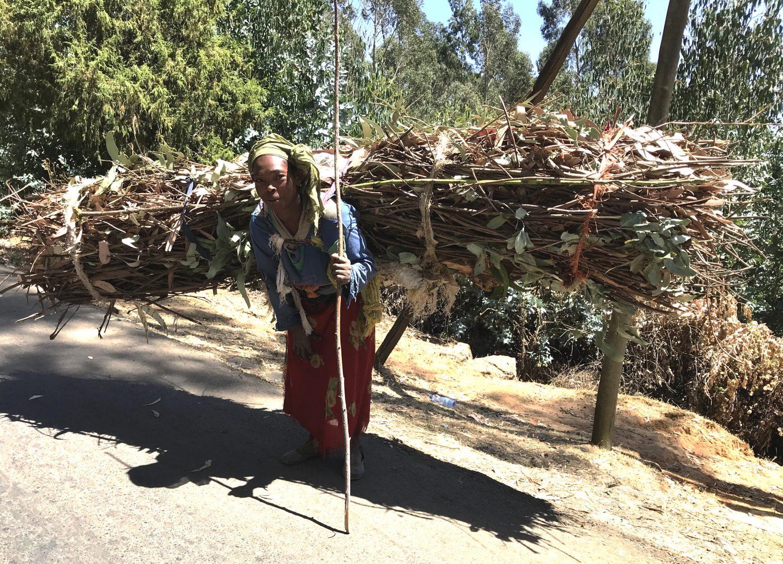 takkendraagster ethiopie