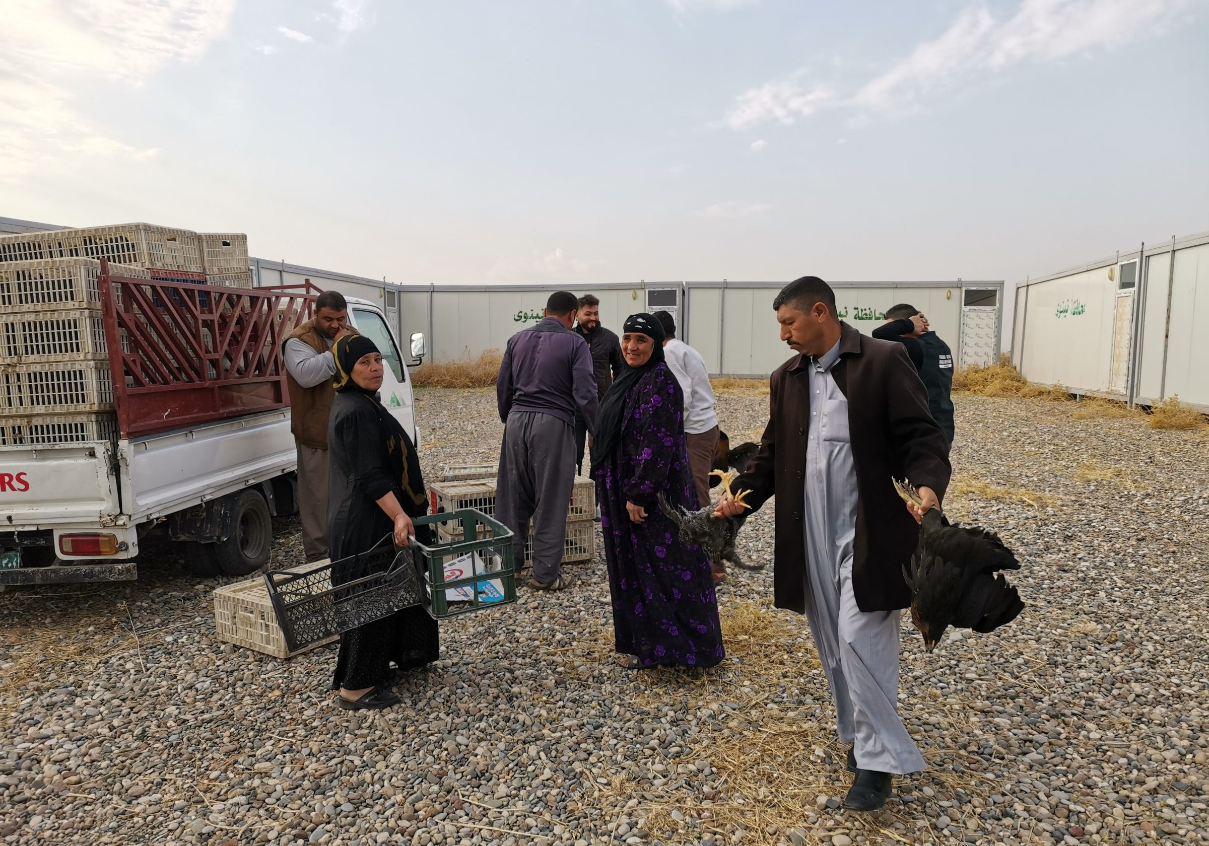 Irak Dorcas Jezidi