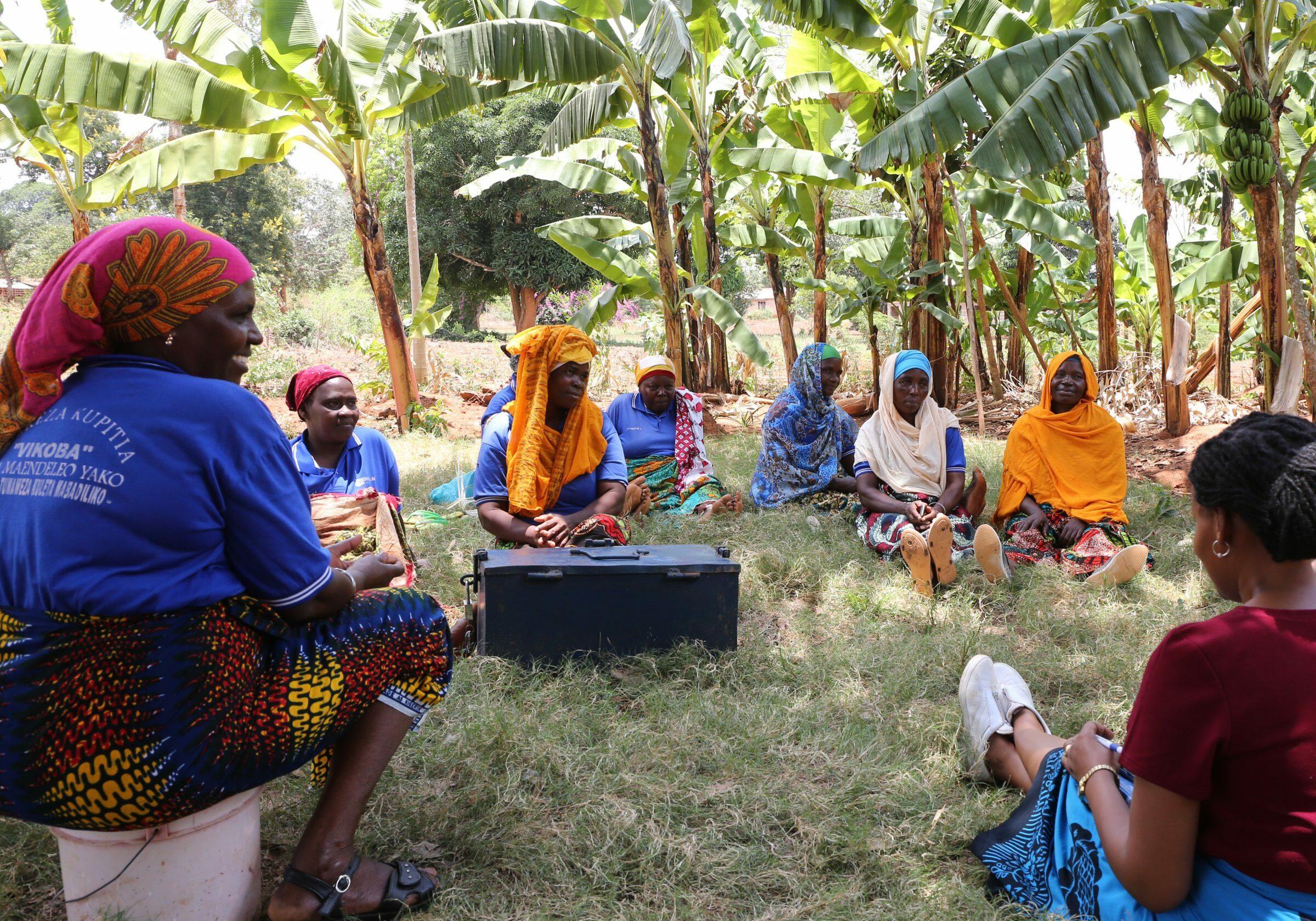 ViCoBa village community banking tanzania handeni